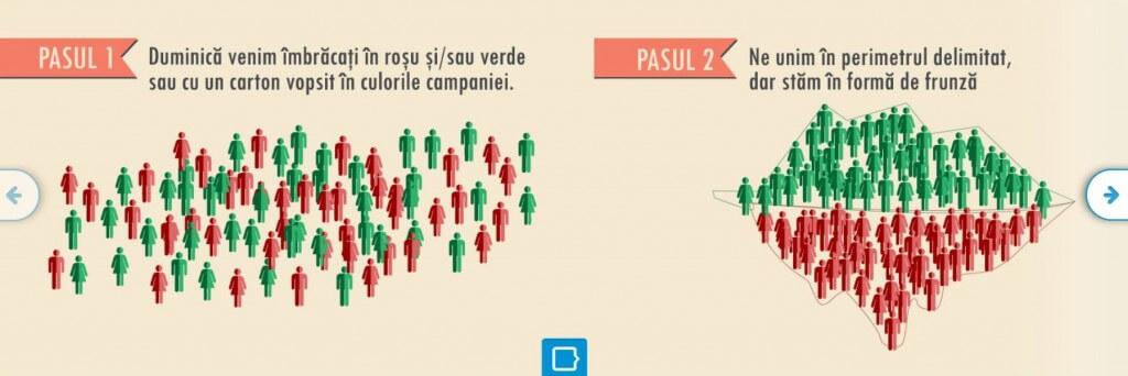 Infografic chenar.ro