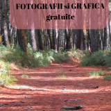 7 site-uri cu fotografii și grafică gratuite