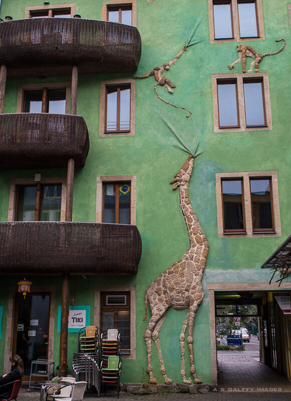 65.Cartier creativ Dresda curtea animalelor