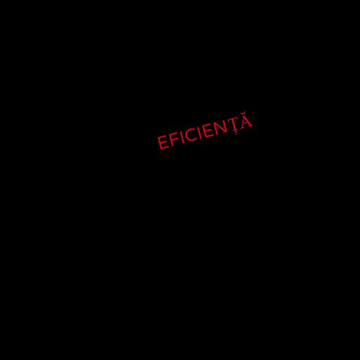 24.Tatuaj eficienta_2